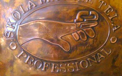 Škola masaže PROFESSIONAL – Raspored nastave